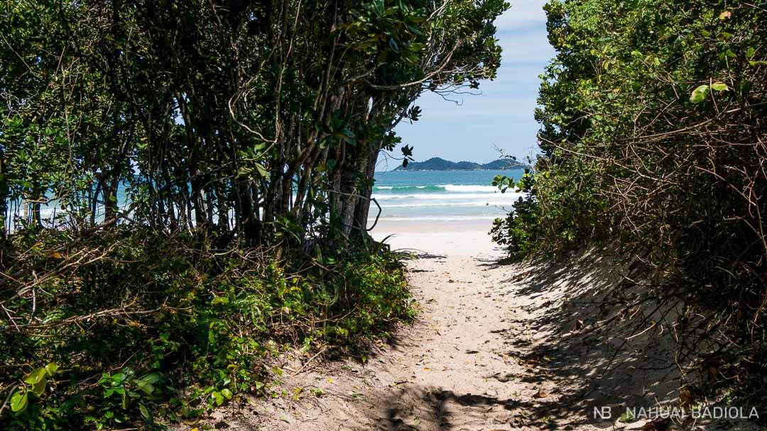 Ilha Grande-Entrada a Lopes Mendes