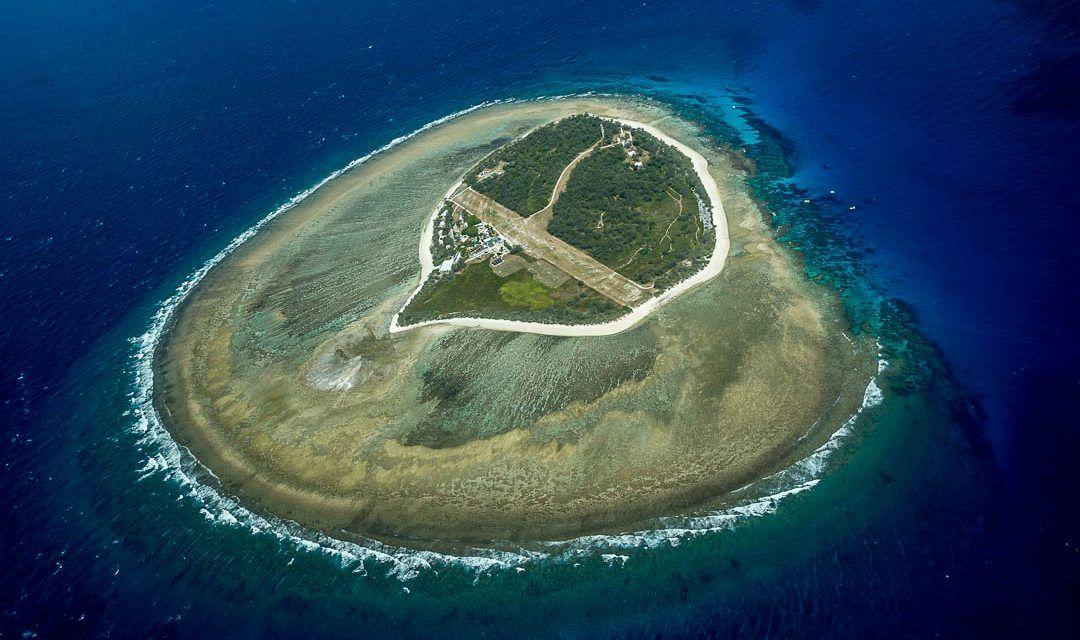 La Gran Barrera de Coral en Lady Elliot Island: no querrás salir del agua