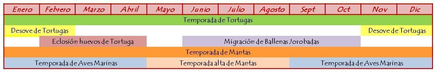 Nature Timetable LEI