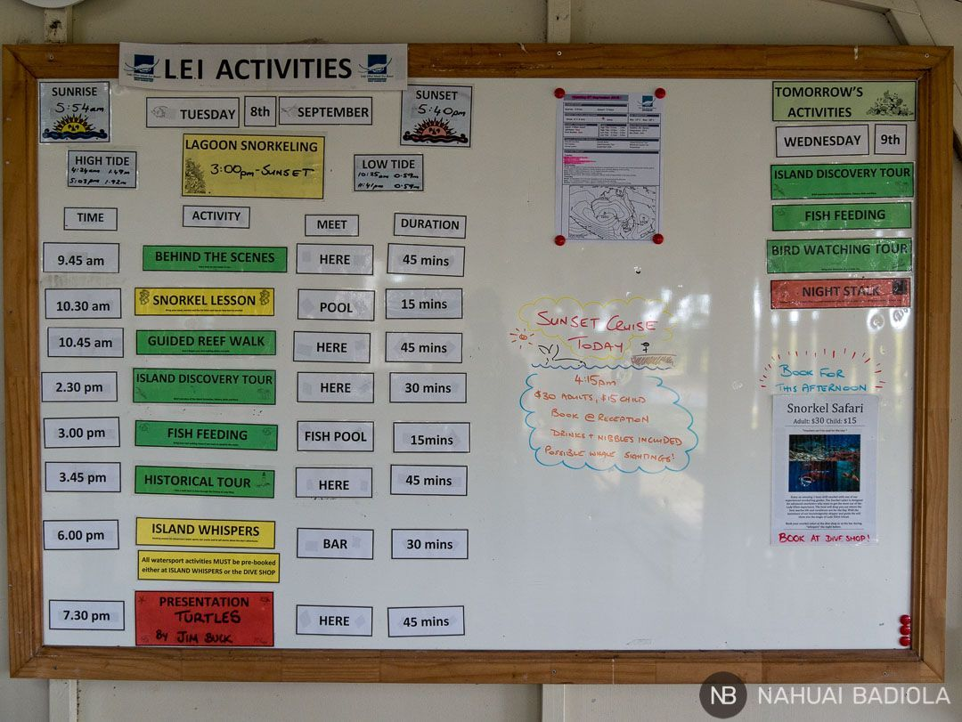 Panel de actividades diario - Lady Elliot Island