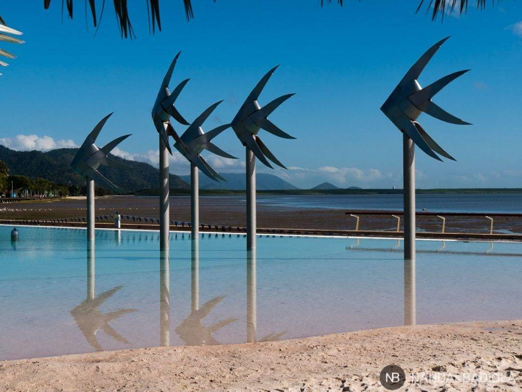 Cairns laguna