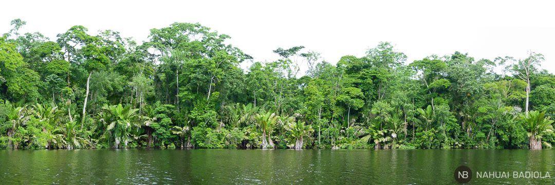 Panorama Tortuguero, Costa Rica-2