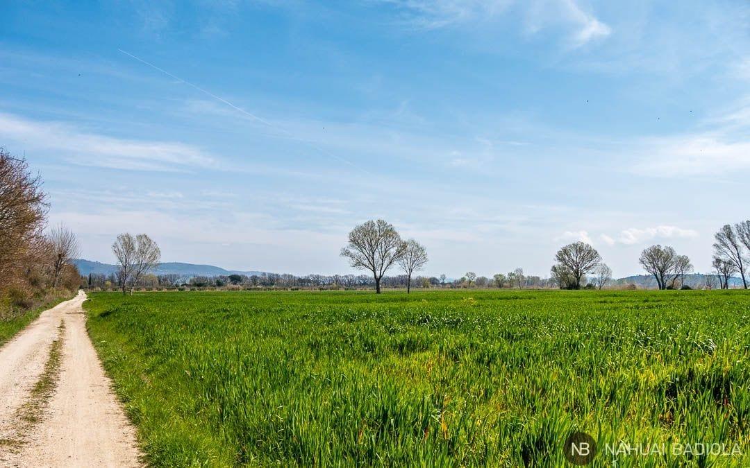 Ruta en bici por el Trasimeno, Umbria