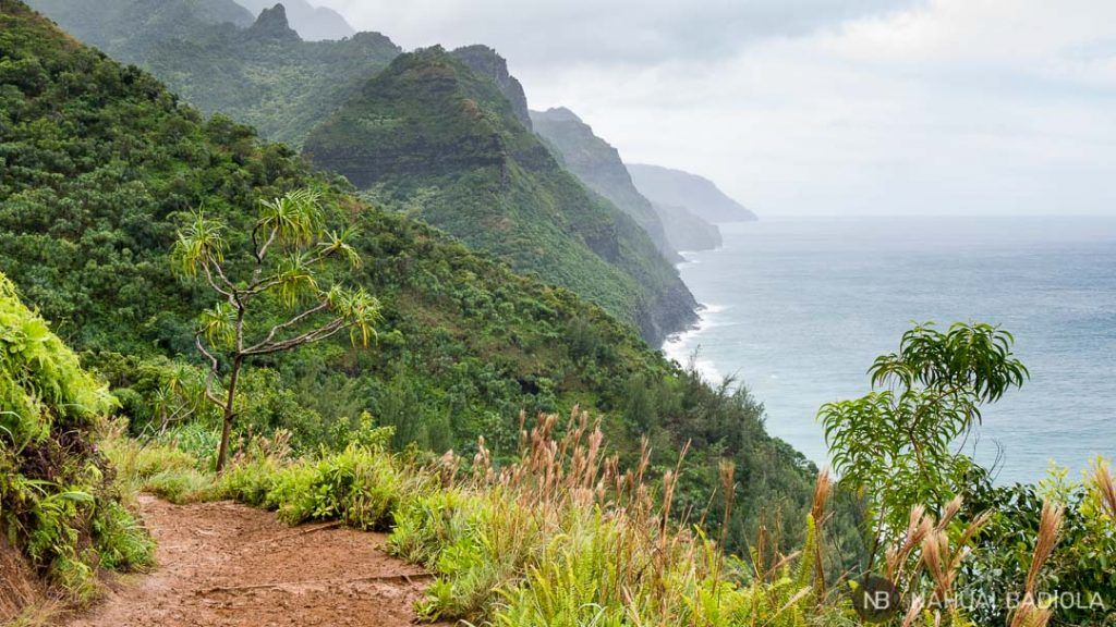 Costa Napali, Kauai