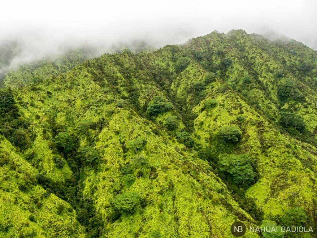 Detalle de las montañas mientras sobrevuelas Kauai en helicóptero