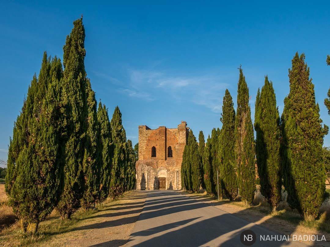 Camino de cipreces que llevan a la abadía de San Galgano, un templo sin techo toscano.