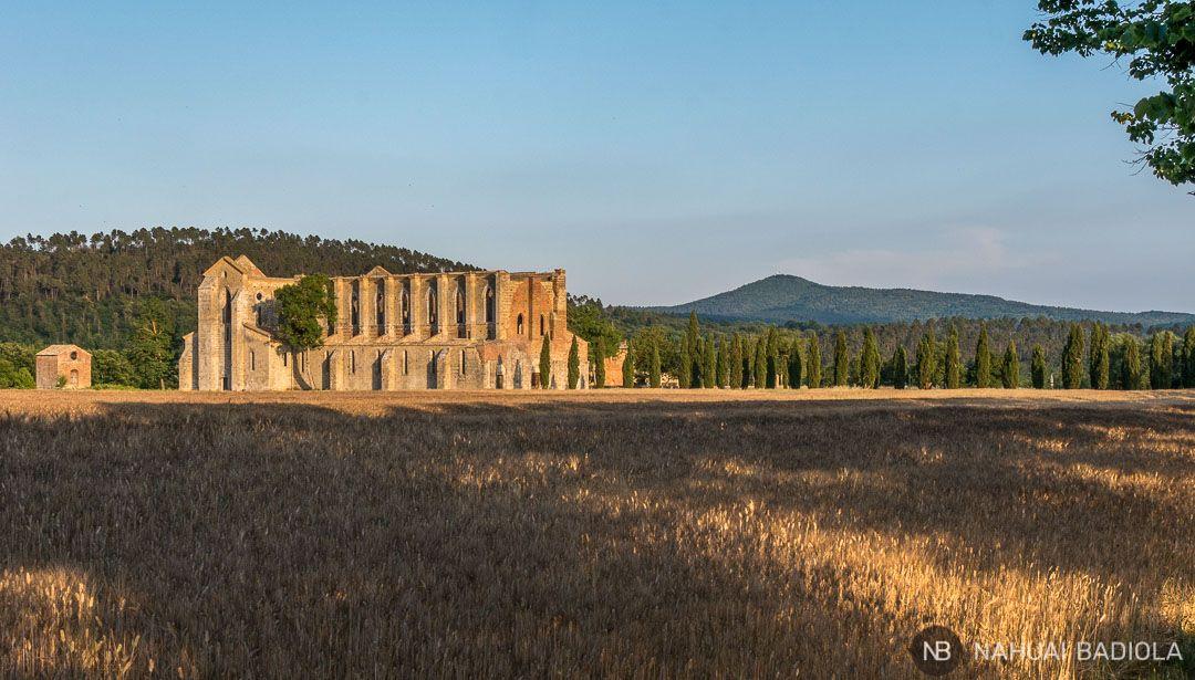 Panorámica de la abadía de San Galgano sobre los típicos motes de la Toscana.
