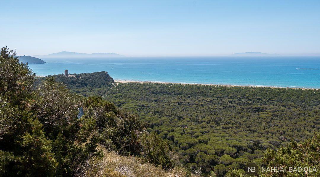 Panorámica del parque de la Maremma con la torre Collelungo y su playa Virgen al fondo. Toscana, Italia.