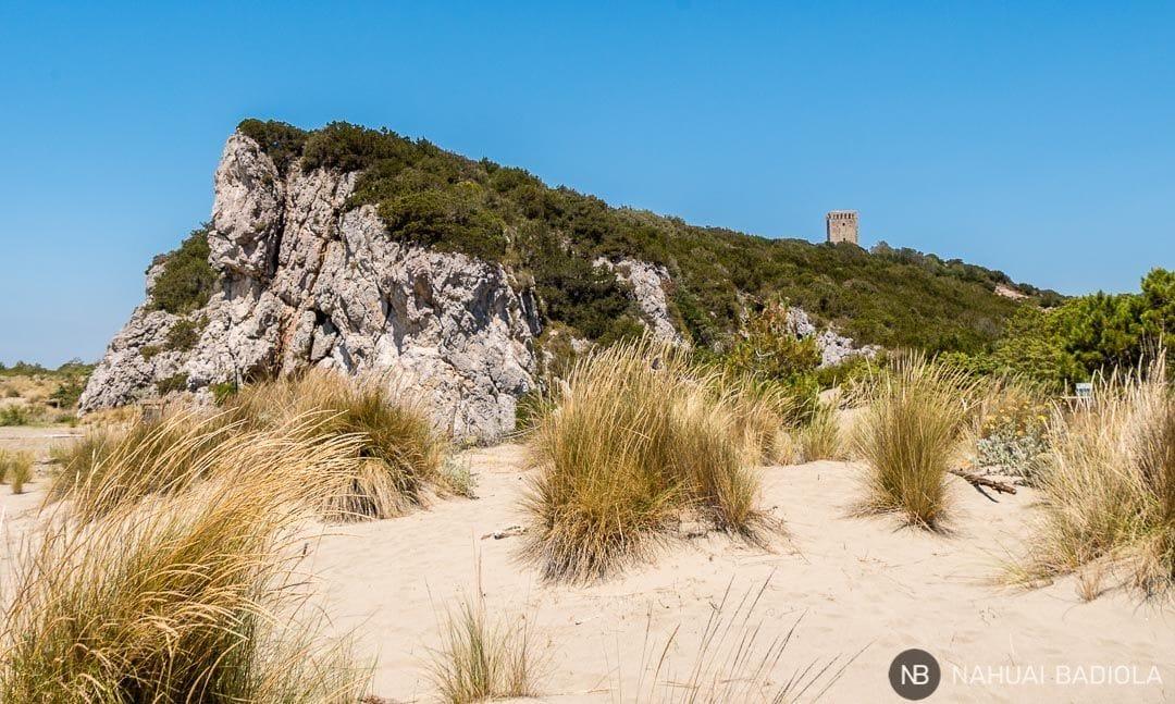 Llegada a la playa virgen de la Maremma desde la Torre Collelungo. Toscana.
