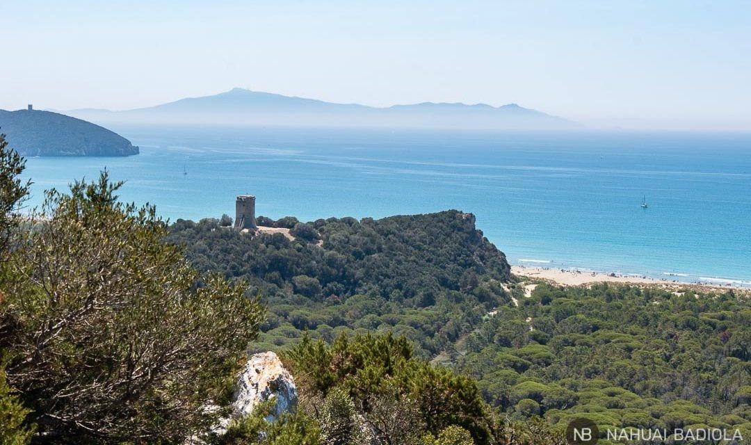 Torre Collelungo y la playa virgen del parque de la Maremma al sur de la Toscana