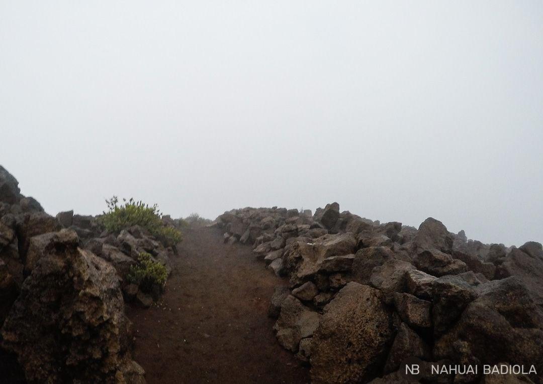 La niebla no deja ver más allá del camino en Haleakala, Maui.