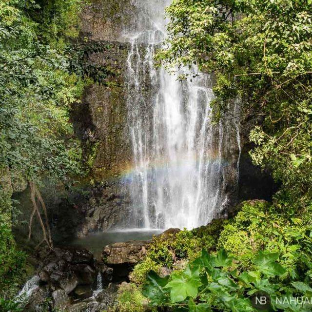 7 días de ruta por Maui, enamórate de Hawaii