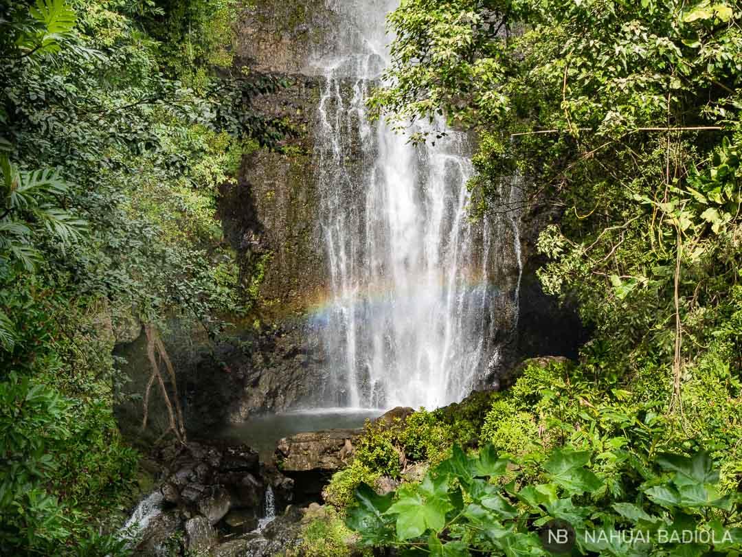 Catarata Wailua Fall junto a la carretera, Road to Hana. Maui.