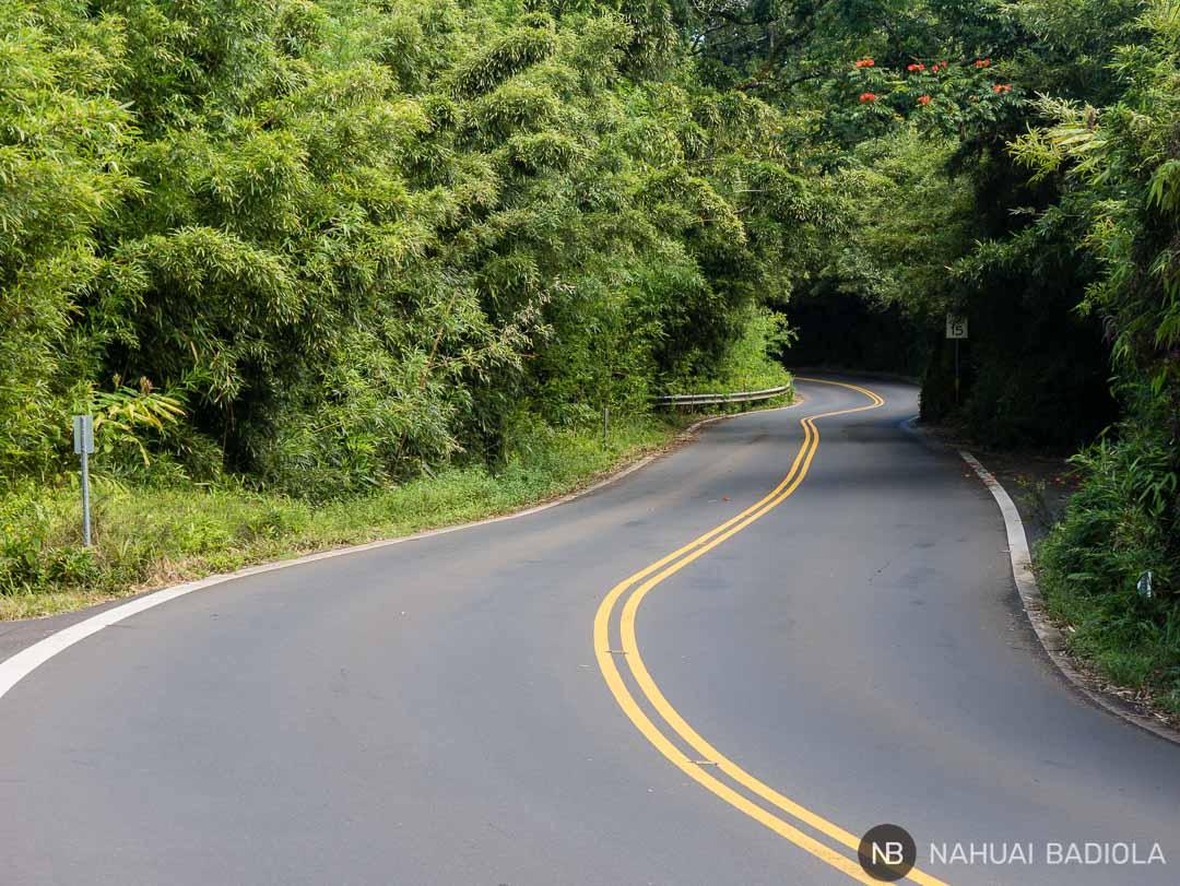 Ejemplo de un tramo en el Road to Hana, Maui.