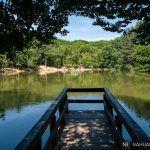 Descubre los 15 senderos que atraviesan la foresta umbra de Gargano