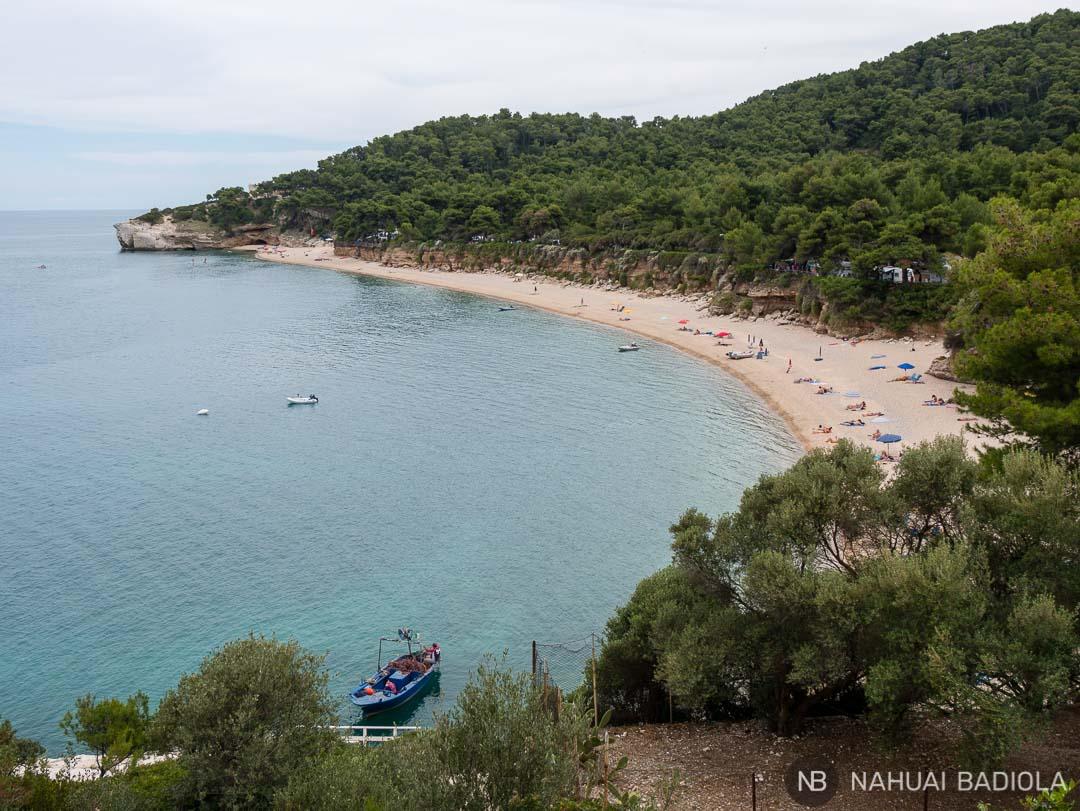 Playa de Campi vista desde el camino de acceso.