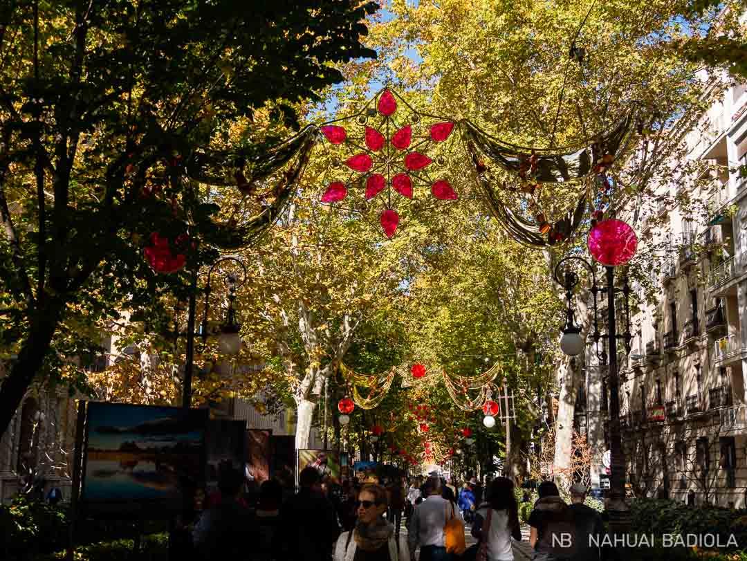 Carrera de la Virgen, Granada.