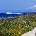 Vuelta en bici a la isla de Favignana