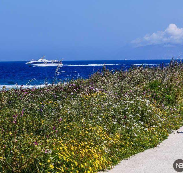 Ruta en bici alrededor de Favignana. Punta San Nicola.