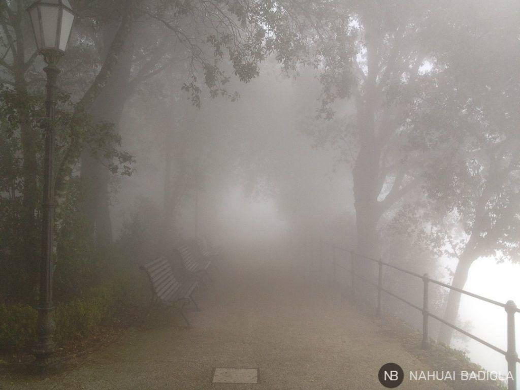 Parque de Erice envuelto en niebla, Sicilia.