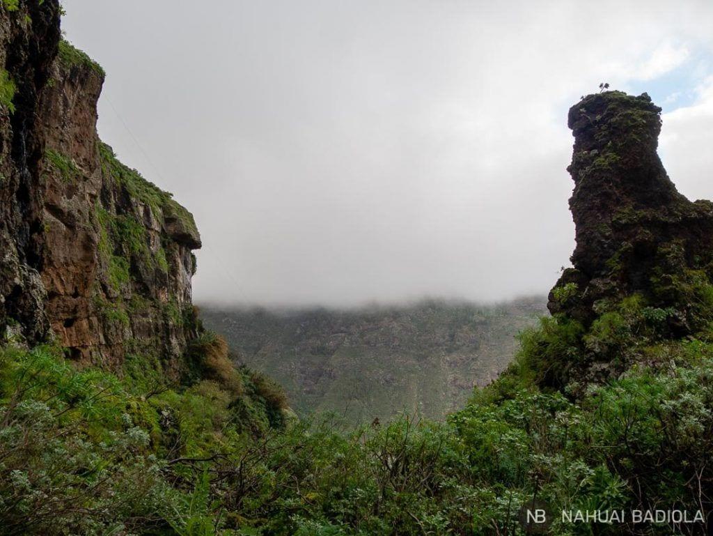 Niebla en el barranco del Sao, Gran Canaria