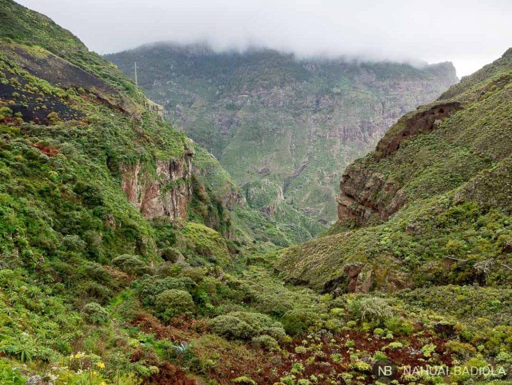 Ruta de trekking por el Barrando del Sao, Gran Canaria