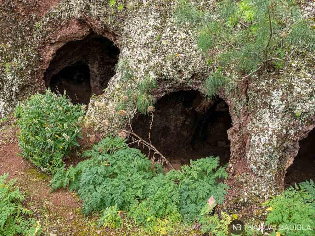 Cuevas del Rey en Gran Canaria
