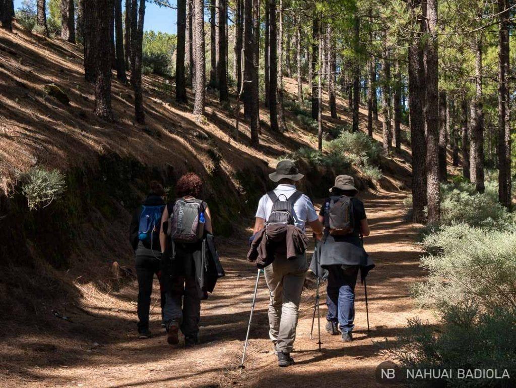 Senderistas haciendo la ruta Artenara-Cuevas del Caballero y los Candiles.
