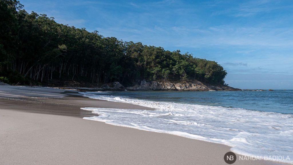 Playa de figueiras en las Islas Cíes, Galicia.