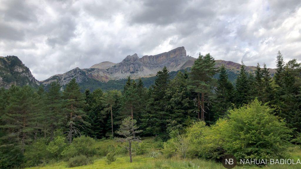 Vista de los picos montañosos desde la ruta circular a la selva de Oza